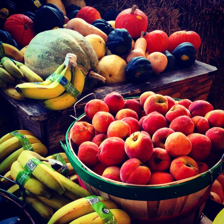 apples-bananas-food-220911